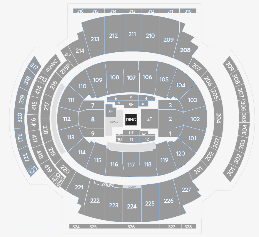 Anthony Joshua v Andy Ruiz Seating plan