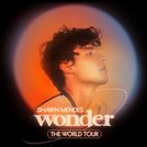 This is an Pussycat Dolls image